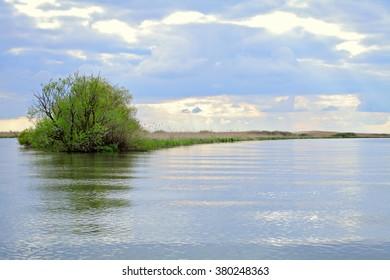 River and spring forest. Lake under cloudy sky.  Danube Delta, Odessa region, Ukraine, Romania. Evening sunset. Morning sunrise