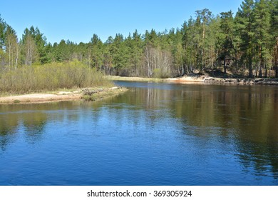 River in spring forest. The river is in a national Park near Ryazan. Russia