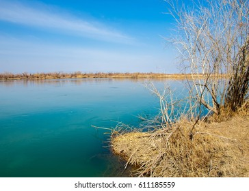river in spring steppe. riverbank overgrown with reeds. water is pure emerald