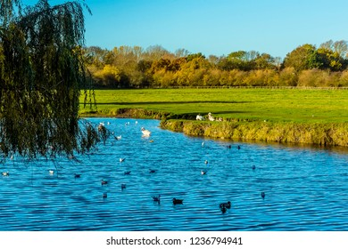 The River Stour winds through the water meadows in Sudbury, Suffolk on a sunny autumn day