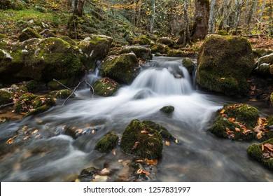 River in Strandja mountain, Bulgaria