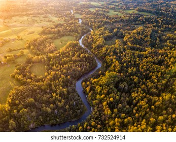 The river stream in the autumn forest. Ogre river. Latvia.