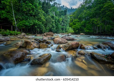 River stream in Endau Rompin Selai  National Park, straddling the Johor/Pahang border, is the second designated national park in Peninsular Malaysia.