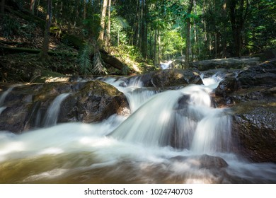 River stream flowing on some big mossy rock in a dark forest