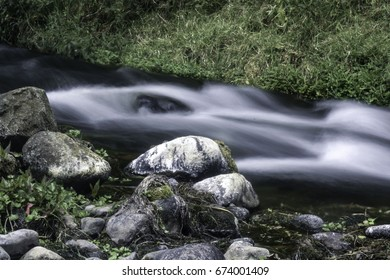 River stream with rocks scenery with a grass background