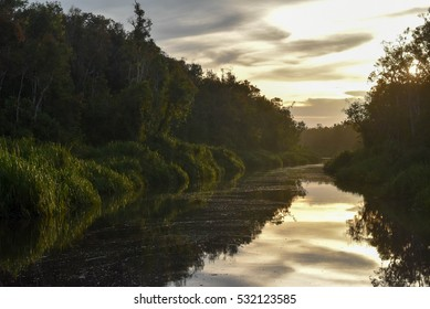 River at Tanjung Puting Kalimantan