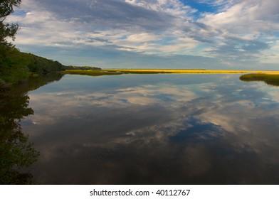 River through a marsh