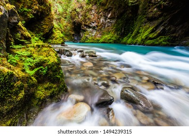 A river through Olympic National Park
