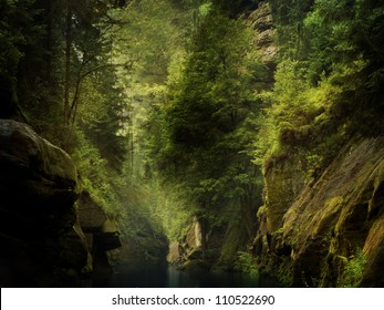 the river through the rocks in wild forest (Czech Switzerland)