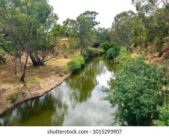 The River Torrens in Adelaide, South Australia, looking upriver from the Gilberton Swing Bridge.
