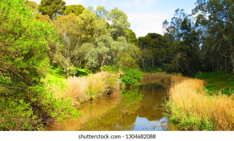 River Torrens in Adelaide, South Australia