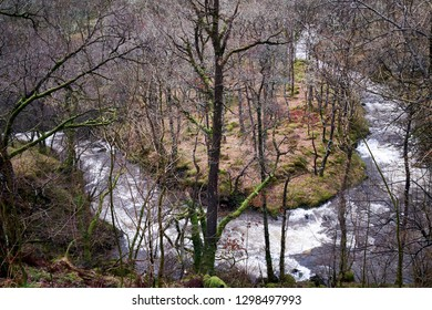 A river travels around a bend in dense woodland in shallow white water rapids
