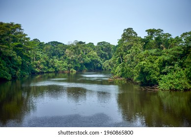 River in the tropical rainforest of central Africa