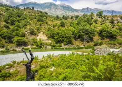 River Valley  Landscape Albania Tepelena Countryside