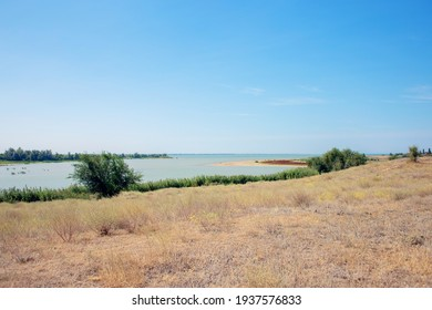 River View. Arid landscape, Russian steppes. Grass scorched by the sun. Natural landscape with a pond