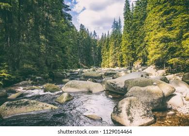 river Vydra in Sumava mountains