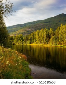 River water in norwegian mountains with green hills and trees as nature ackground, Norway, Europe