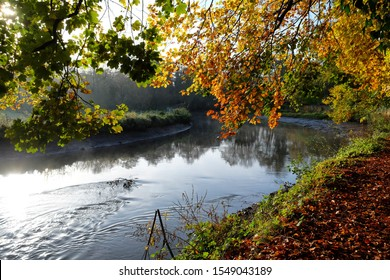 The River Wey navigation water levels low after the collapse of Tumbling Bay Weir in Guildford on 02/11/2019
