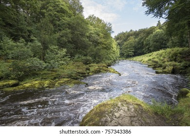 The river Wharfe is high at Bolton Abbey England