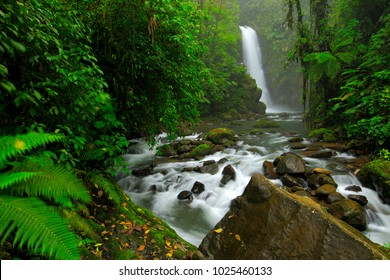 River with white stream, rainy day, green vegetation in national park. La Paz Waterfall Gardens, with green tropical forest, Central Valley, Costa Rica.