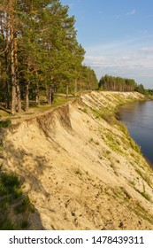 riverbank, high sandy cliff and pine forest on the shore