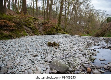 A riverbed running low