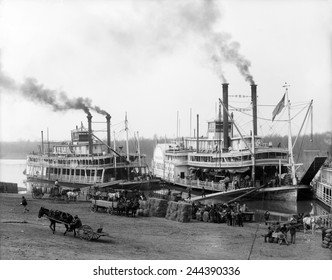 Riverboats on the Mississippi River receiving cargo and supplies at the Vicksburg landing. African Americans provide the hard labor of loading the boats. Ca. 1905.