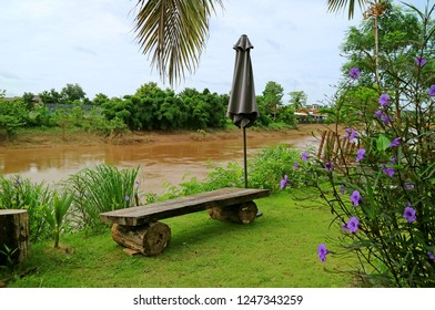 Riverfront Garden with Wooden Bench and Minnie Root Flower Plants