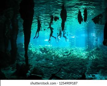 Riviera Maya, Mexico Cenote - Tourists Swimming, Gran Cenote, Tulum, Mexico