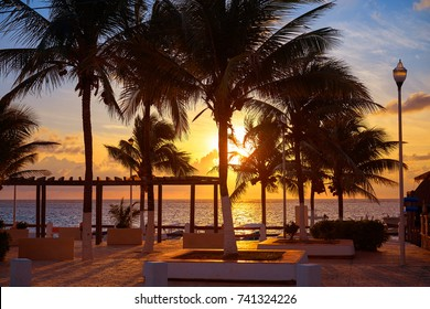 Riviera Maya Puerto Morelos sunrise beach palm trees in Mexico