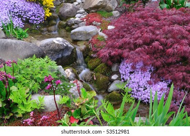 Rivulet between different plants and flowers