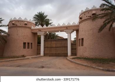 Riyadh extravagant and huge houses, Saudi Arabia.