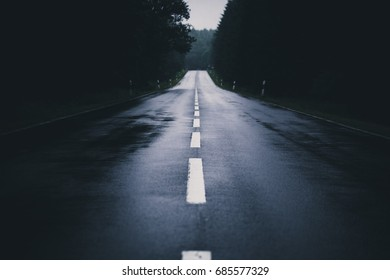 Road after the rain passes through dark forest