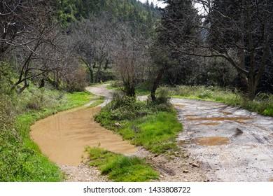 Road after rain in Quadisha valley, Lebanon