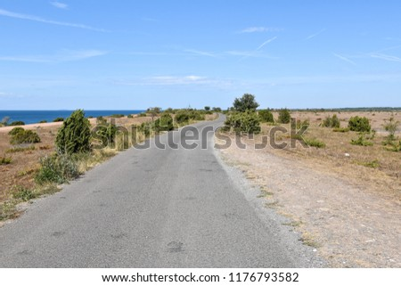 Road along the coast at the swedish island Oland in the Baltic Sea