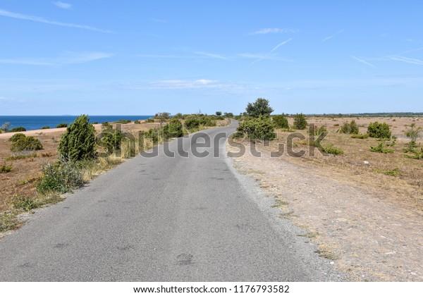 Road along the coast at the swedish island Oland in the Baltic Sea