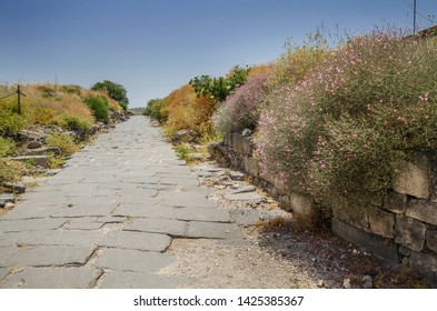 Road to the ancient city Horvat Sussita (Hippos).  During the Hellenistic and Roman / Byzantine periods, the city of Hippos (Sussita) was originally a rather central city in the Golan region.