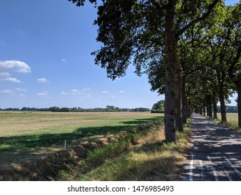 Road around Eesveen in Overijssel, The Netherlands