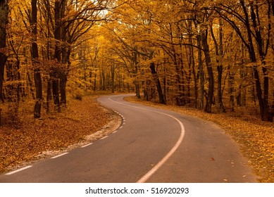 Road to autum