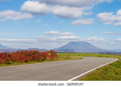 road in autumn with Mt. Yotei on background