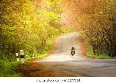 Road autumn springtime Romantic scene bigbike couple love travel tourist Beautifu viewl at Doi Ang Khang ,Chiang Mai , Thailand