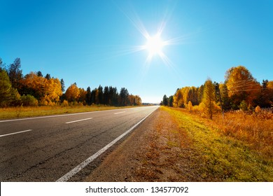 road in Autumn woods with colorful foliage tree in rural area.