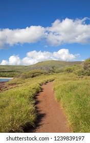 Road to the beach on Lanai island, Hawaii