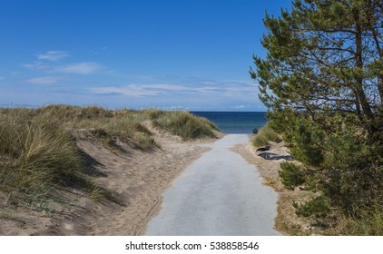 The road to the beach of Tofta on Gotland, the larges Island in the Baltic sea.