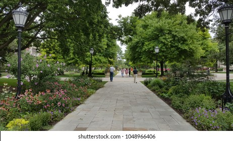 A road in the beautiful garden. Campus of University of Chicago.