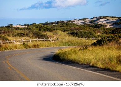 Road between dunes in Cape Cod, Massachusetts, USA