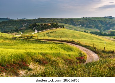 Road between green fields in Tuscany