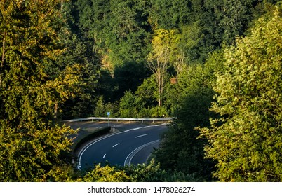 Road between trees and forest in the german eifel national park