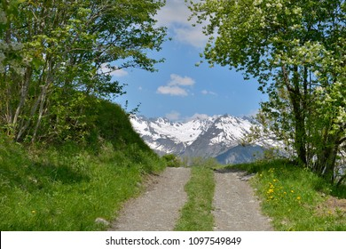 road between the trees giving onto mountain covered with snow in spring