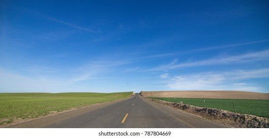 Road with Blue Sky and Green Fields